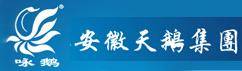 安徽天鹅团体